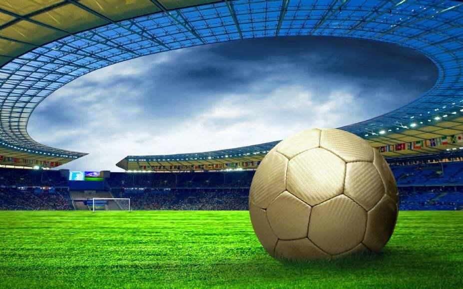 """2018年""""体彩杯""""德州市中小学生足球联赛(小学组)"""